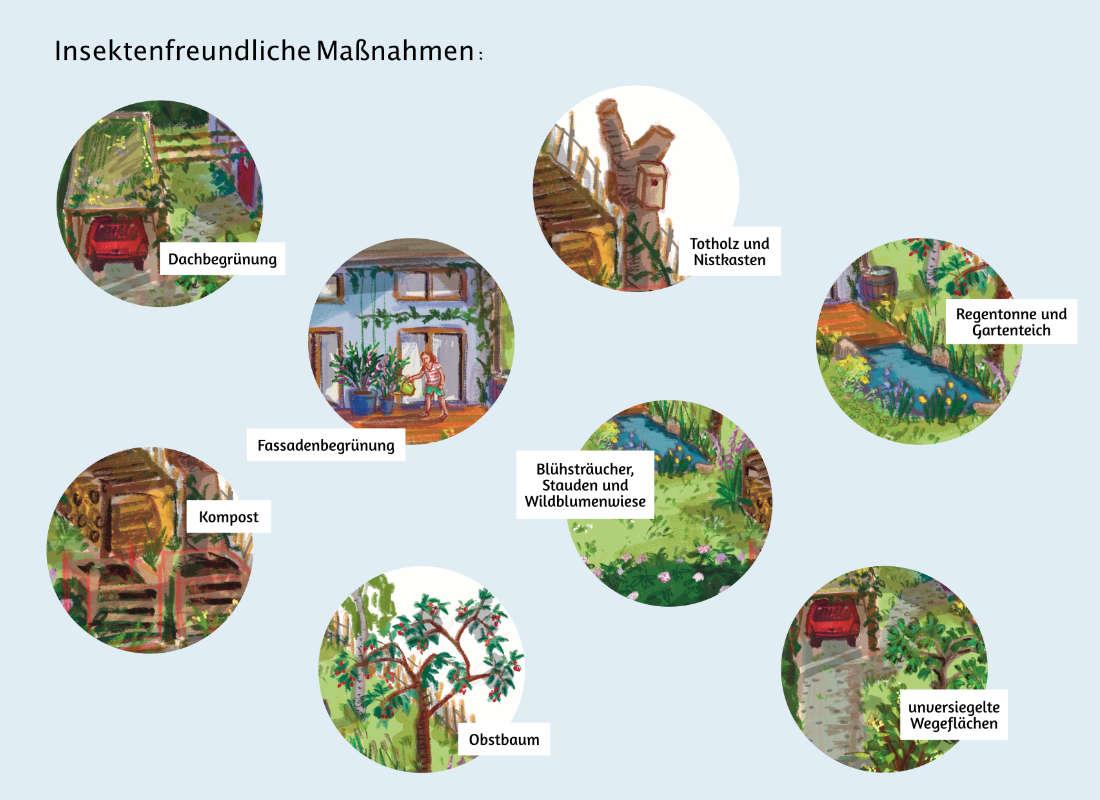 ulrikebahl-illustration-insektenfreundlich_Garten_Privathaus