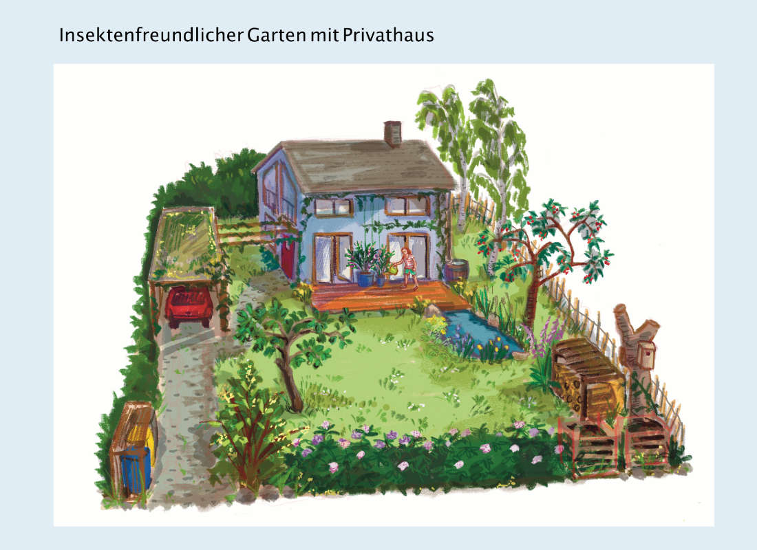 ulrikebahl-illustration-insektenfreundlicher_Garten