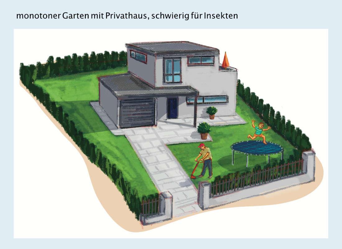 ulrikebahl-illustration-insektenunfreundlich_Garten_Privathaus